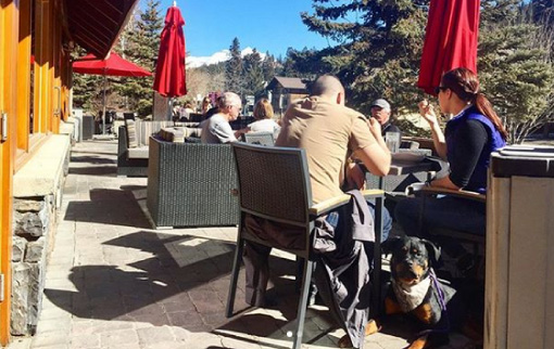 Dog Friendly Patio