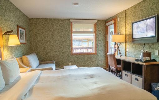 Standard Hotel Room 1 Queen Bed